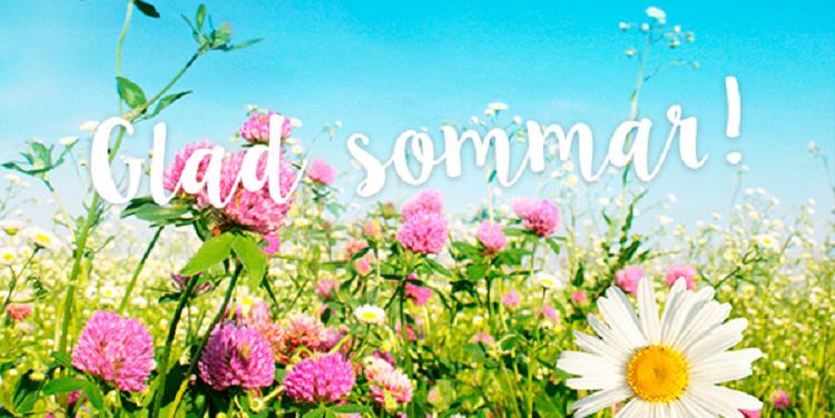 Glad sommar – Näsbyvikens Båtsällskap